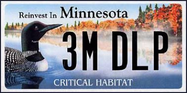 State of MN plate