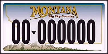State of MT plate